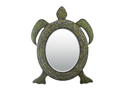 turtle mirror