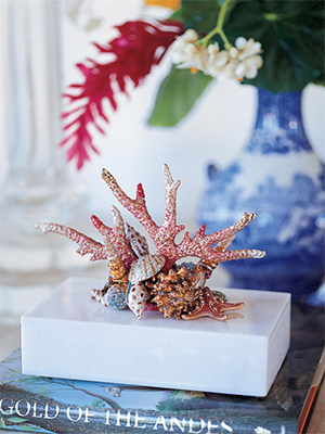 coral sculpture against navy vase