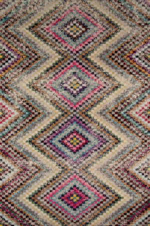 multicolored area rug