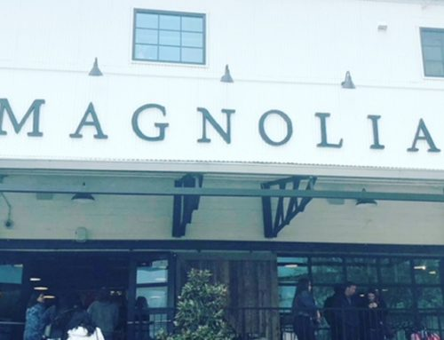 Magnolia – It's Everything and So Much More